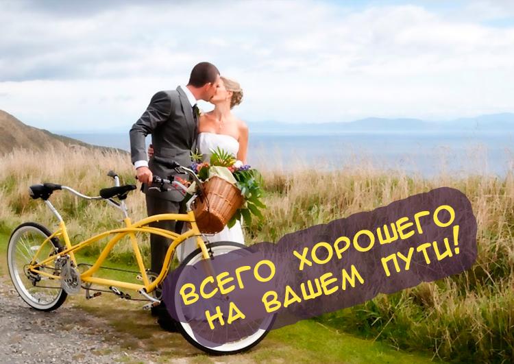 Днем, день свадьбы картинки смешные